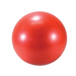 LE9555 Gymnic Classic Ball 55cm Red