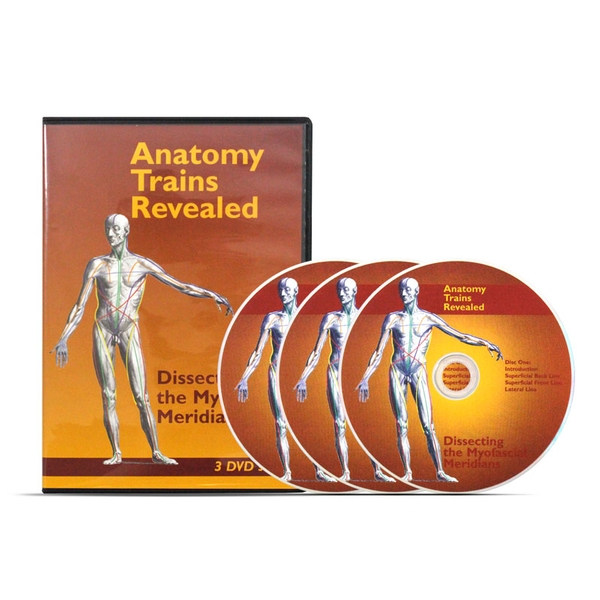 Anatomy Trains Revealed Dvd Set Thomas Myers Optp