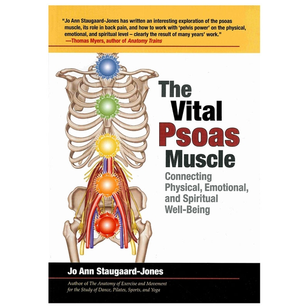 the vital psoas muscle connecting physical emotional and spiritual wellbeing