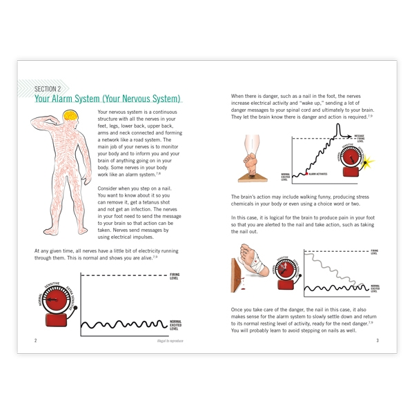 Your Nerves Are Having Shoulder Surgery - Single