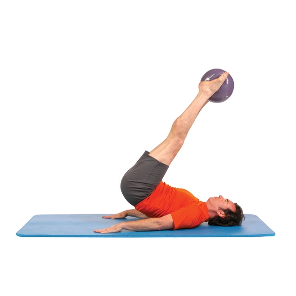Stability Ball Manual: Exercise Balls