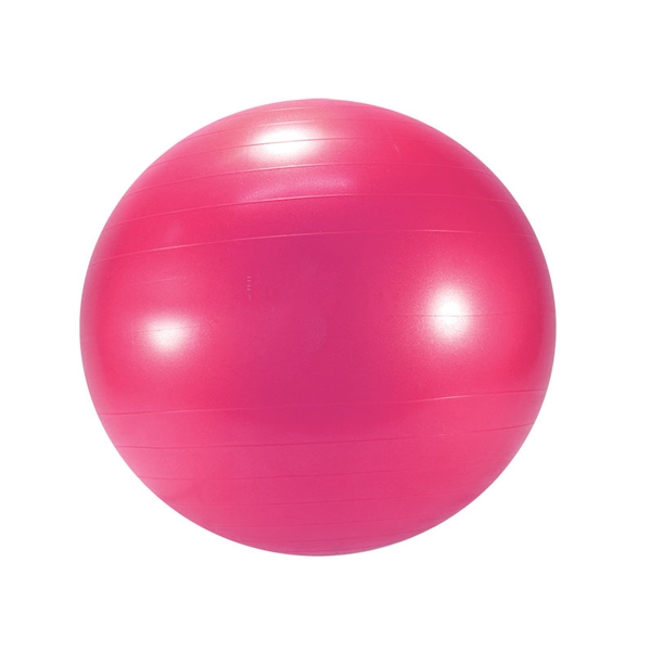 Gymnic Exercise Ball Exercise Balls Optp