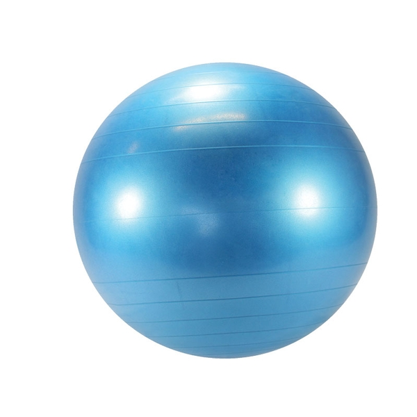 Gymnic Exercise Ball | Exercise Balls | OPTP